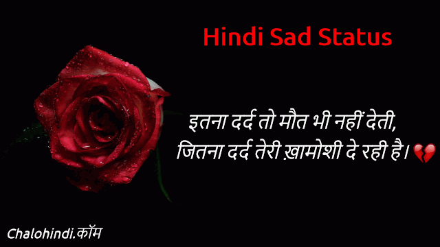 Status in Hindi in One Line attitude